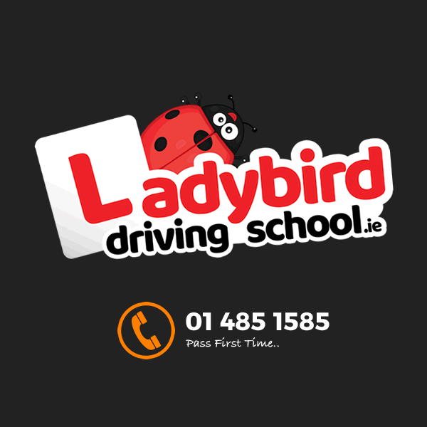 ladybird-driving-school-social-profile