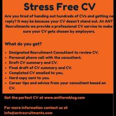 stress free cv