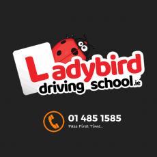 ladybird-driving-school-social-profile